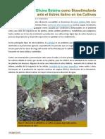 96. Glicina Betaina como Bioestimulante ante el Estres Salino en los Cultivos.pdf