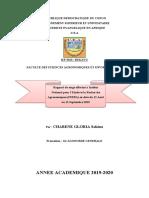 Rapport de stage GLORIA CHABENE sakina