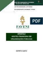 Gestão-Financeira-em-Organizações-Públicas (1) OK