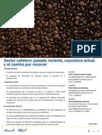 sector-cafetero-pasado-reciente,-coyuntura-actual-y-el-camino-por-recorrer