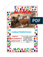 ALBUM DE ANIMALES.docx