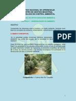 CAPITULO I. educacion ambiental. doc