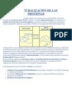 DESNATURALIZACIÓN DE LAS PROTEÍNAS