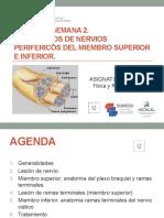 SEMANA 2.  PPT TRASTORNOS DE NERVIOS PERIFERICOS con audio ACTUAL PP13