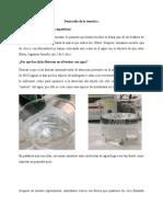 BASES MOLECULARES PROP AGUA 2