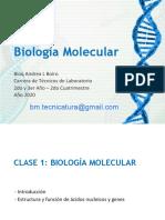 CLASE 1 - Acidos Nucleicos.pdf
