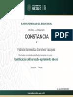 Constancia (7)