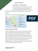 GESTION AMBIENTAL DE ALICORP.docx