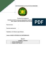 PROYECTO DE INVESTIGACION  yheyson - alvaro  (1).docx