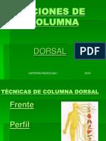 dorsal lumbar sacro coccigea