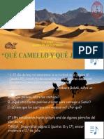 Plan lector 3Julio 13.Grab
