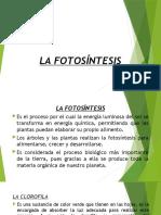 DIAPOSITIVAS LA FOTOSÍNTESIS (1)