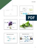 Sistema de Gestión SIN COLOR.pdf.pdf