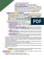 1. SEMIO DEL APARATO URINARIO.pdf