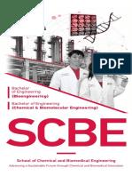 NTU SCBE Brochure 2020.pdf