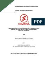 TESIS FINAL MACV.pdf