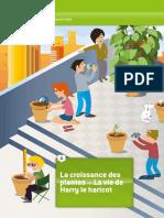 iStage_1_-La_croissance_des_plantes