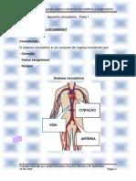 parte1-aparelhocirculatrio-130925055653-phpapp02.pdf
