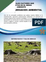 CONTAMINACION Y CONTAMINANTES.pptx