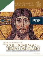 Subsidio - XXIII Domingo del Tiempo Ordinario - Ciclo A
