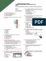 Examen de Nivel II MMMPA 2015-10