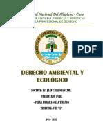 DERECHO AMBIENTAL Y ECOLOGICO - PILAR