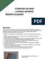 p8. SISTEMA PETROLERO ORIENTE (1)