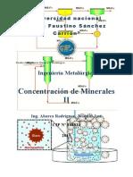 GUIA DE CONCENTRACION DE MINERALES II.docx