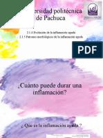 EVOLUCION DE LA INFLAMACION AGUDA.pptx