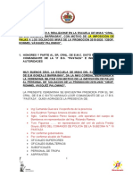 PROGRAMA IMP. PALAS 2020