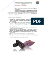 demanda lot (7).docx