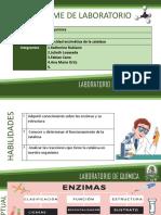 infromeenzimas.pdf