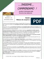IC n° 12-2010