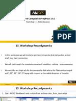 23_Workshop_13_(OPTIONAL)_Rotordynamics_17.0