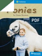 04 Ponies