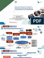 UIII_T2 Organización del Sector Salud para la Implementación de los servicios de Telemedicina.pdf