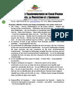 Les 33 Paroles Transformatrices Et Puissantes Du Coach Pognon Pour La Sante, La Protection Et l'Abondance