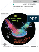 New Designs for Phototherapeutic Transition Metal Complexes