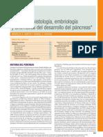 Anatomía, histología y embriología de páncreas