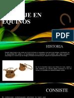 HERRAJE EN EQUINOS.pptx
