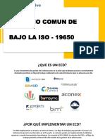 CDE - ENTORNO COMUN DE DATOS.pdf