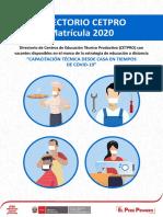 DIRECTORIO_DRELM_CETPRO_2020
