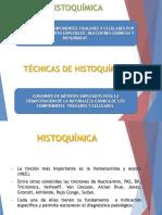 4-HISTOQUIMICA.pdf
