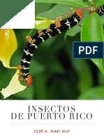 Insectos de Puerto Rico