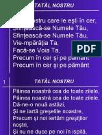 01 TATAL NOSTRU