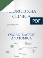 CLASE 14_ Neurologia clinica.pptx