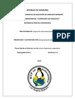 Dennys Alexander Alvarenga O .pdf