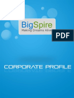 BigSpire Corporate Profile
