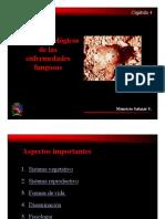 Aspectos de las enfermedades fungosas.pdf