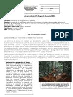 Inserción Laboral Guía 10 Formación Instrumental EPJA